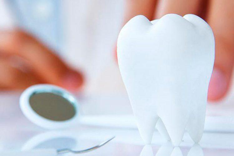 Serv-Dentis-Consultation